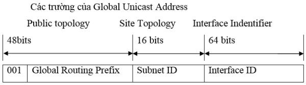 Cac truong cua Unicast