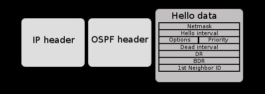 Nội dung của một gói tin OSPF Hello